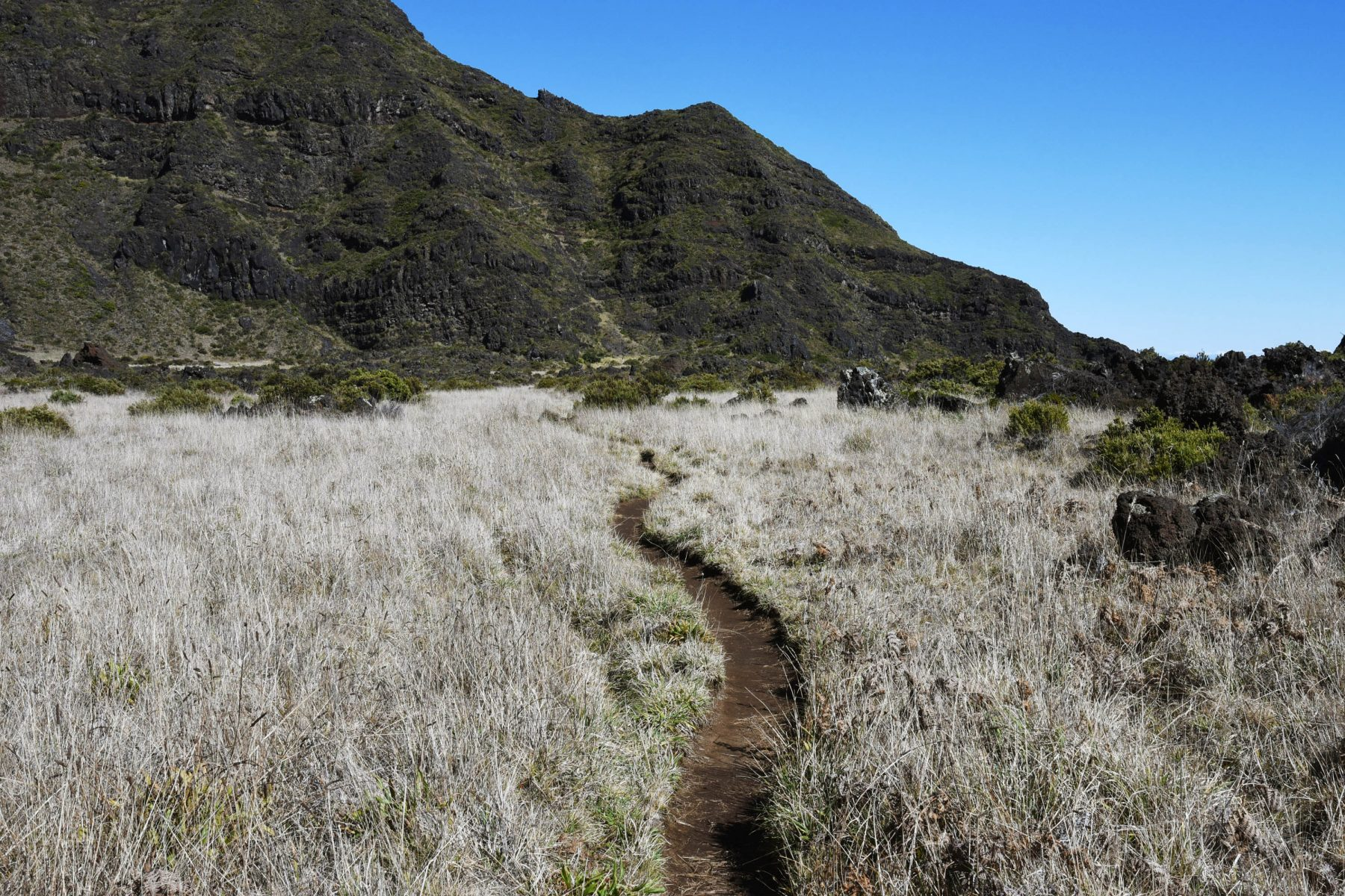 Approaching the switchbacks on the Halemau'u Trail