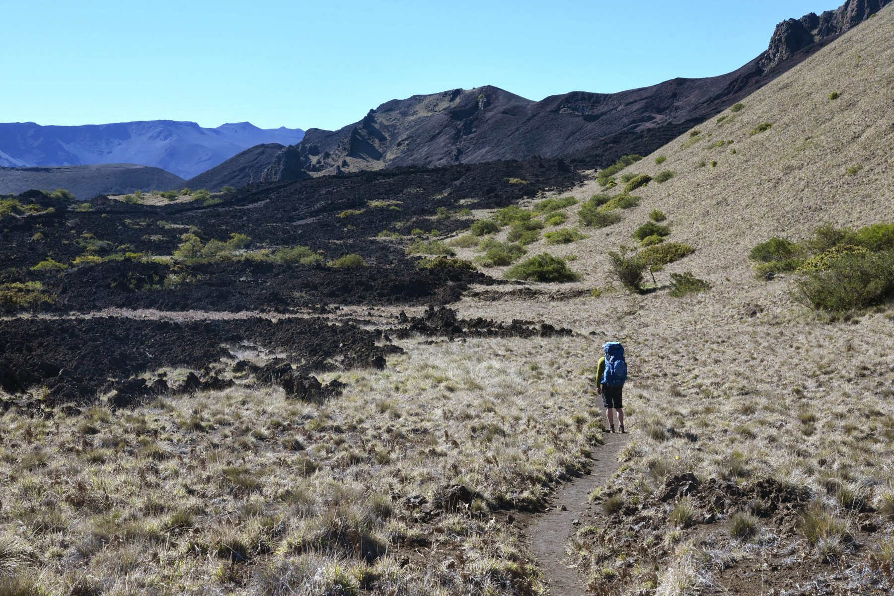 Backpacking the Halemau'u Trail