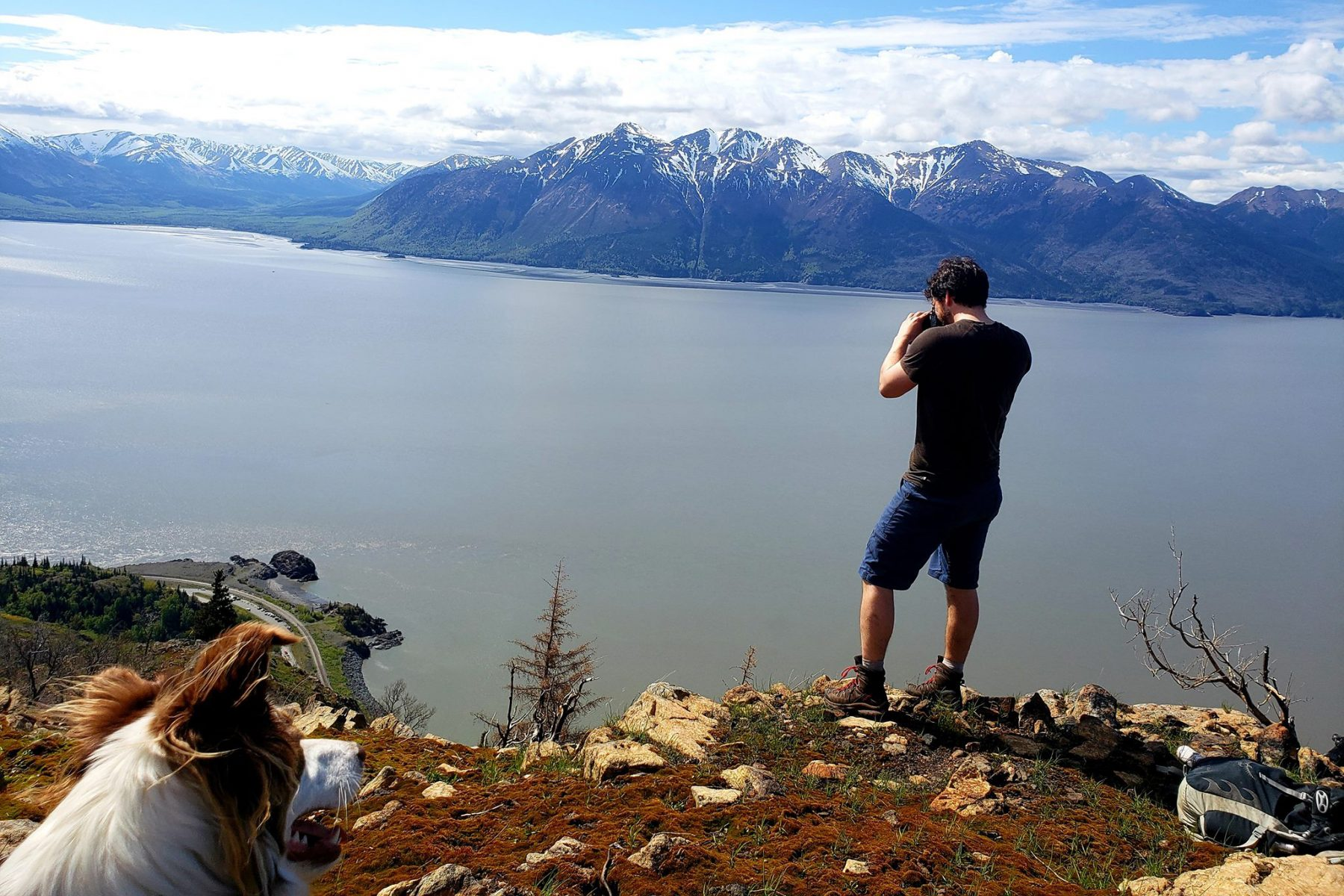 Photographing dall sheep on Rainbow Peak in the Fjallraven Abisko Trail T-Shirt