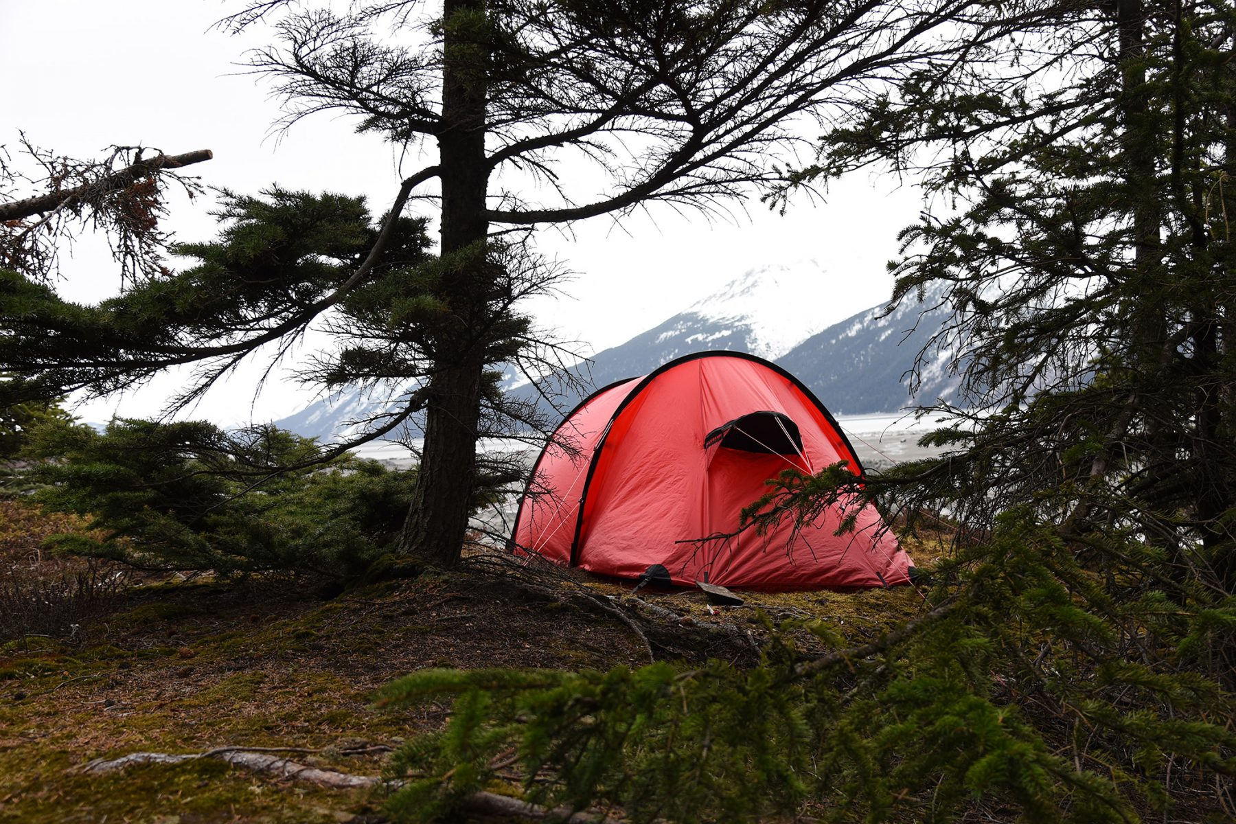 Hilleberg Nammatj 2 on in the trees next to Turnagain Arm