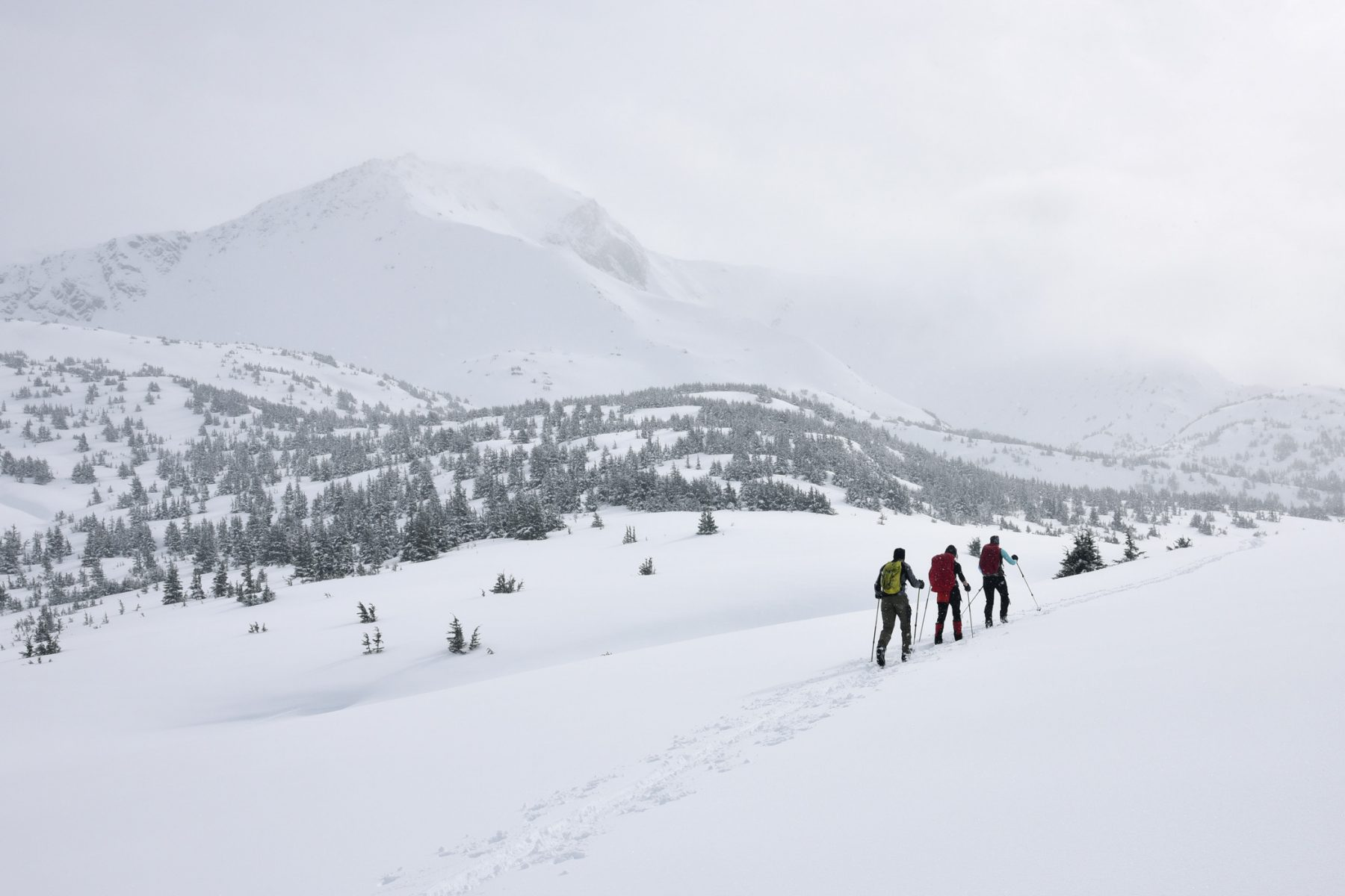 Skiing toward Indian Creek Pass